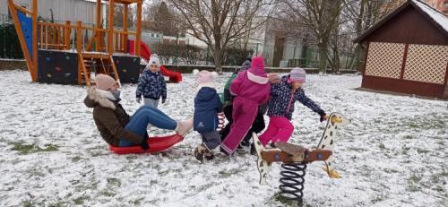 Berušky si užívají sněhu